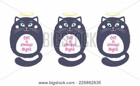 Vector Gray Cat In Cartoon Style. Funny Illustration Of Sitting Gray Kitten With Turquoise Eyes, Nim
