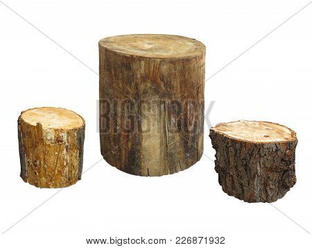 Garden Furniture Made From Wooden Log Isolated On White Background
