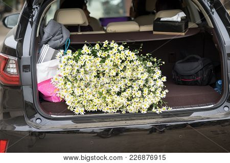 Pile Of Daisy Flowers In Car. Some People Like Sightseeing On Flower Field And Buy Daisies Home In H