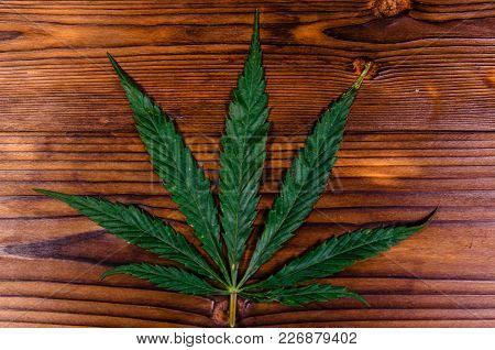 Leaf Of The Cannabis Plant On Rustic Wooden Table. Top View