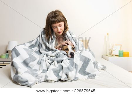 Girl With Dog In Warm Blanket In Bed. Young Female Petting Her Lazy Staffordshire Terrier Dog In Thr