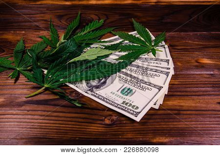 Leaves Of The Cannabis Plant And One Hundred Dollar Bills On Rustic Wooden Table