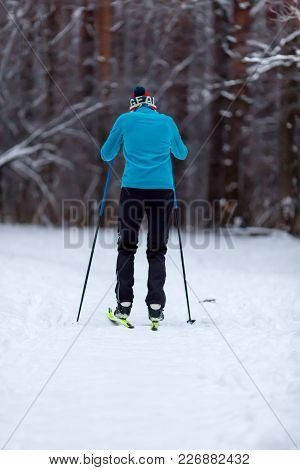 Photo From Back Of Male Skier In Blue Jacket In Winter Forest In Afternoon