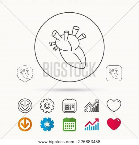 Heart Icon. Human Organ Sign. Surgical Transplantation Symbol. Calendar, Graph Chart And Cogwheel Si
