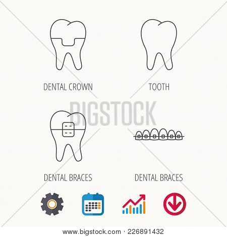 Dental Crown, Braces And Tooth Icons. Stomatology Linear Sign. Calendar, Graph Chart And Cogwheel Si
