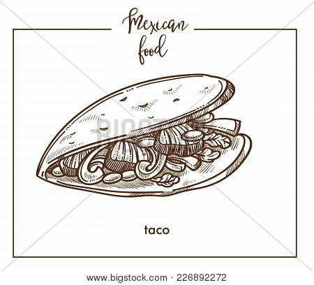 Taco Sketch Icon For Mexican Food Cuisine Menu Design. Vector Sketch Of Mexico Traditional Tacos Tor
