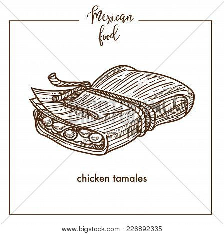 Chicken Tamales Sketch Icon For Mexican Food Cuisine Menu Design. Vector Sketch Of Mexico Traditiona
