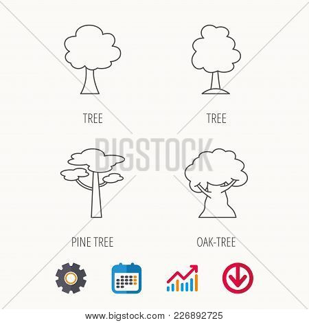 Pine Tree, Oak-tree Icons. Forest Trees Linear Signs. Calendar, Graph Chart And Cogwheel Signs. Down