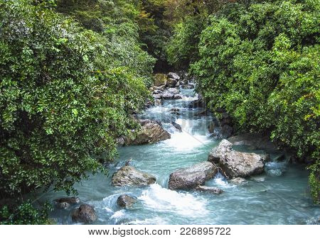 A Cold And Aqua-colored Glacial Stream Flows Through A Dense Forest In Fiordland, New Zealand.