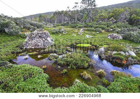 Backcountry Scenery In The Walls Of Jerusalem National Park, Tasmania.