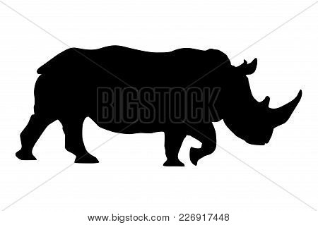Rhino. Black Silhouette. Vector Illustration Isolated On White Background