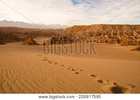 Footprints At Valle De La Muerte (spanish For Death Valley), Los Flamencos National Reserve, San Ped