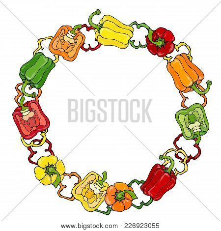 Red, Orange, Yellow, Green Bell Peper Wreath. Half Of Sweet Paprika And Rings Of Pepper Cuts. Fresh