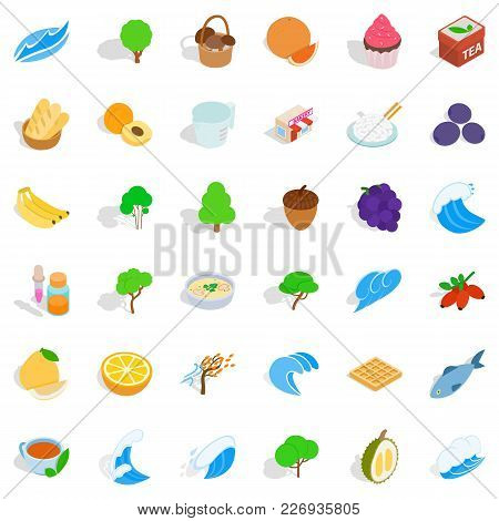 Realistic Icons Set. Isometric Set Of 36 Realistic Vector Icons For Web Isolated On White Background