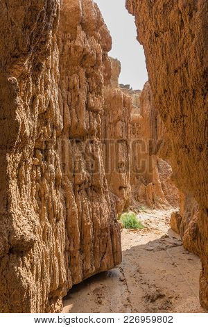 A Narrow Erosion Canyon At The Koranna Mountain Near Excelsior In The Free State Province Of South A