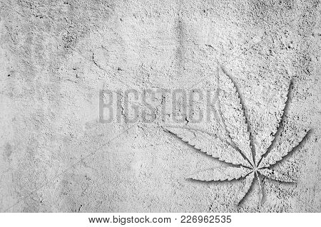 Marijuana Leaf In Cement Stucco Background Texture Wall Grey