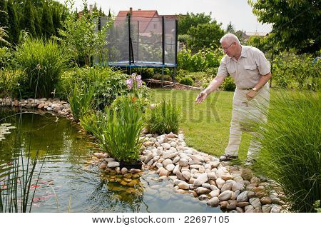 Retirement - Feeding Fish