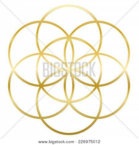 Golden Seed Of Life. Precursor Of Flower Of Life Symbol. Unique Geometrical Figure, Composed Of Seve