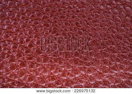 Seamless Texture Of A Surface From A Natural Skin Of Red Color. Close-up View.