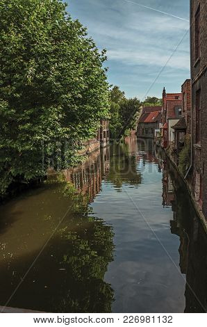 Canal With Old Buildings On The Border, Leafy Tree And Blue Sky In Bruges. With Many Canals And Old