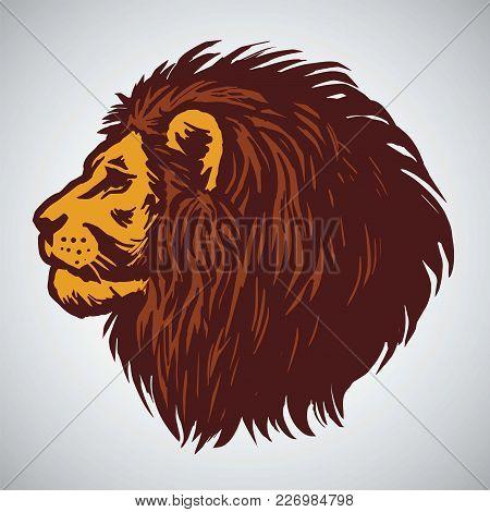 Lion Head Drawing. Vector Illustration Design Logo Template