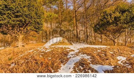 Winter Landscape Of Unmarked Burial Mound Covered With Snow In Woodland Area Between Two Prominent E