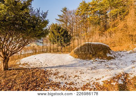 Winter Landscape Of Unmarked Burial Mound In Woodland Area Behind Two Prominent Evergreen Trees With