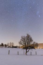 Night snowy scene in Tuhinj valley, Slovenia
