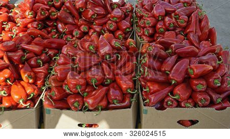 fresh chilies and peppers from the market of skopje poster