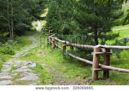 Mountain Forest Landscape. Stone Winding Hiking Trail Along A Wooden Fence Among The Forest.  Žiarsk