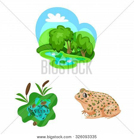 Vector design of frog and anuran logo. Collection of frog and animal stock vector illustration. poster