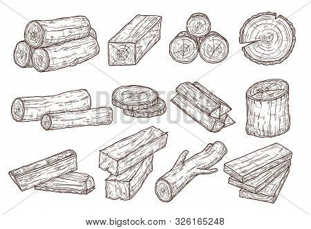 Sketch Lumber. Wood Logs, Trunk And Planks. Forestry Construction Materials Hand Drawn Isolated Vect
