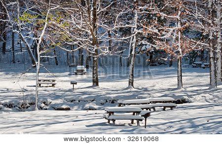 Snowy Blanket