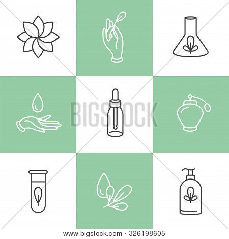 Vector Set Of Logos, Badges And Icons For Natural And Organic Products. Eco Safe Sign Design. Collec
