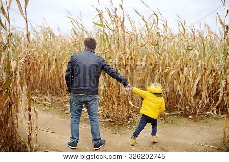 Little Boy And His Father Having Fun On Pumpkin Fair At Autumn. Family Walking Among The Dried Corn