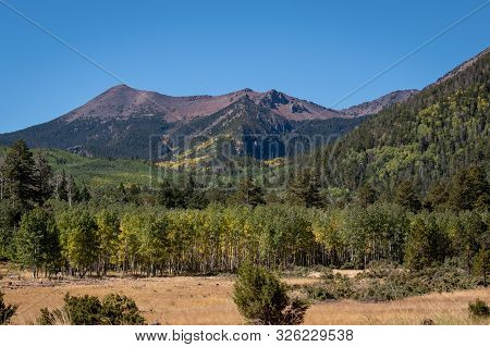 Beautiful Mountain View In Early Fall Colors