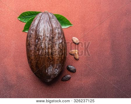 Cocoa pod and cocoa beans on the red background. Top view.