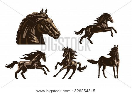 Horse Images In Classic Minimal Style.  Set Of Vector Illustration.
