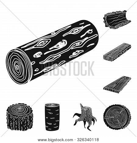 Vector Illustration Of Hardwood And Construction Sign. Set Of Hardwood And Wood Stock Symbol For Web