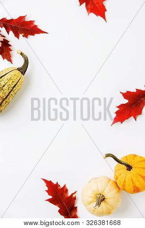 Autumn Holidays Background With Copy Space For A Greeting Text, Greeting Card Or Leaflet Template