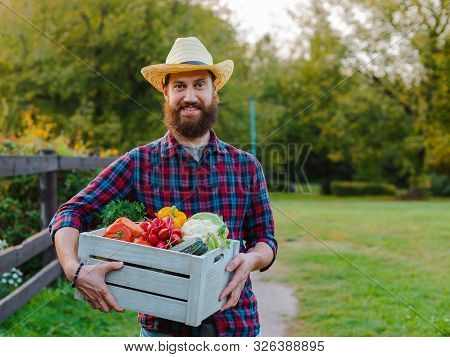 Young 30-35 Years Old Young Bearded Man Male Farmer Hat With Box Fresh Ecological Vegetables Garden