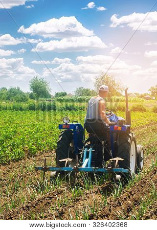 A Farmer On A Tractor Plows A Field. Vegetable Rows Of Leeks. Plowing Field. Seasonal Farm Work. Agr