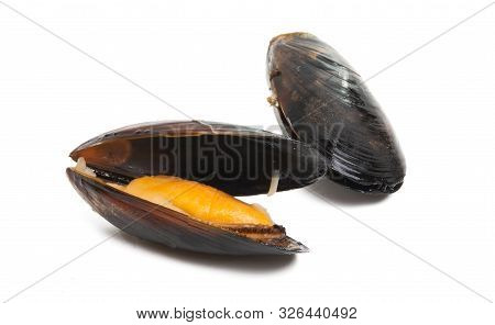 Mussels Cooked Shellfish Isolated On White Background