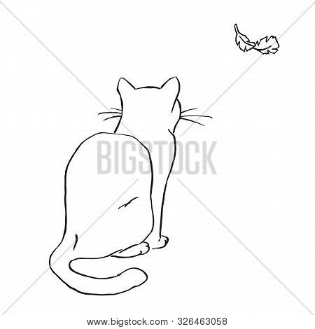 Wight Cat Bait Light Fluffy Feather Lineal Color Vector Illustration