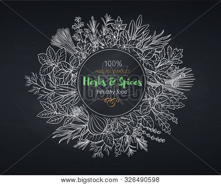 Culinary Herbs And Spice Banner, Chalkboard Style. Seasoning Food Design Vector Illustration Of Bay