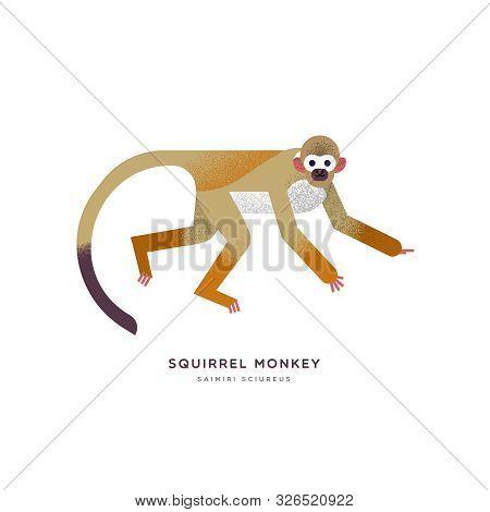 Squirrel Monkey Animal Illustration On Isolated White Background. Educational Wildlife Design With F