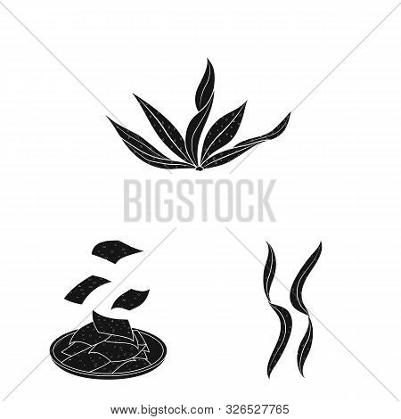 Vector Design Of Grass And Natural Logo. Collection Of Grass And Seaweed Vector Icon For Stock.