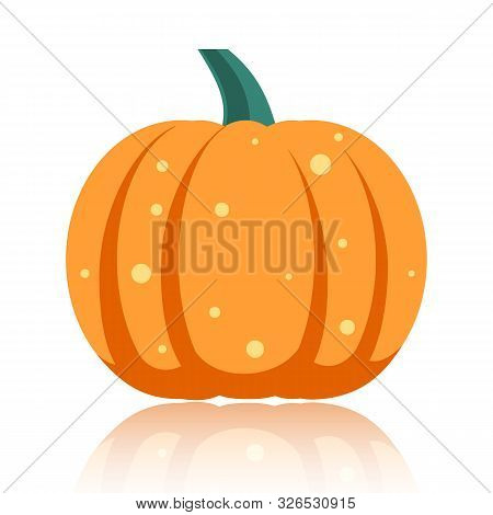 Pumpkin Flat Icon. Sign Of Halloween. Thanksgiving Pictogram Fall Farm Harvest, Closeup Squash Veget