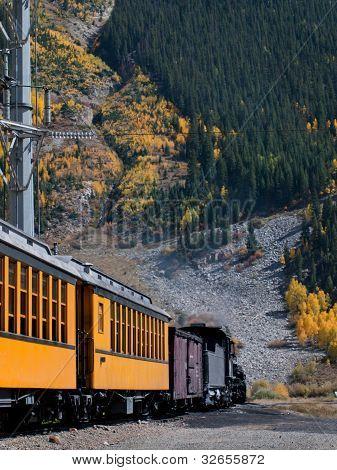 Narrow Gauge Train