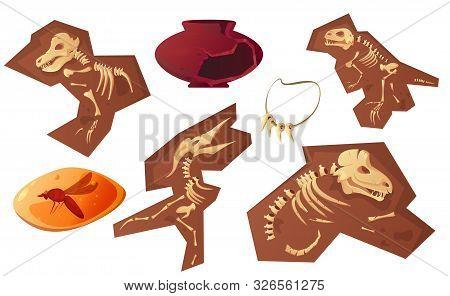 Archaeological And Paleontological Finds Cartoon Vector Illustration. Ancient Ceramic Vase, Fossil D